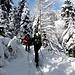 Sitôt sortis d'Albeuve (770m), la neige est vite abondante