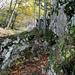immer wieder Fels- und offenes Waldgelände im letzten Anstieg