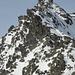 Marmotta, dabuesse und Berglurch suchen nach der Idealroute