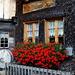 Le restaurant de Chessel : un endroit charmant et très recommandable