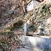 Am Wanderweg nach Lumino hat es zwei wasserführende Brunnen