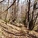 Angenehmer und knieschonender Rotweiss-markierter Wanderweg von Monti di Savoru nach Lumino