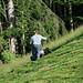 Hard work for the farmers on the steep hills in the Muotathal