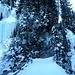 Wunderschöne Eis Welt Nr.2. Blick zurück, Fahrweg von Langwies hinauf nach Jatz