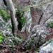 Tiefblick von einem der Barenburg-Vorsprünge auf eine der Aufstiegsrinnen
