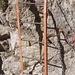 L'inizio della scala in metallo che porta sul Caminetto Pagani. Dopo l'attraversamento del traverso con le staffe si affronta il Caminetto. Siamo nell' Alta Via delle Grigne. Notare il segnavia con bollo azzurro circondato da quadrato rosso. Si pensi che questa via parte da Lecco.