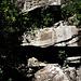 Die trockenen Tiger Falls