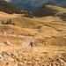 De la montée vue sur Bernard et la ferme de l'Oberi Bire.