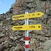 Endlich im Madatschjoch. Mit 3030m der höchste Punkt unserer Alpenüberschreitung!