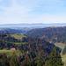 Blick in den Churzeneigraben. Im Hintergrund der Jura