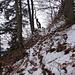 kleiner Aufstieg Richtung Felsbändlein