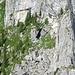 Am Col d'Oberberg toben sich die starken Mädels und Jungs aus