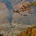 Vom gegenüberliegenden Sass di Quaggo: Klettergebiete Galbisio und Gorduno