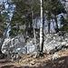 das typische Clubwägli-Ambiente: steile Hänge, von Felsen durchsetzt