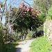 Der Beginn in Solduno, die Blütenpracht ist allgegenwärtig
