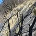 da schießt das Adrenalin in die Höhe. Das Geländer ist an zwei Stellen geborsten, am Anfang hängt es lose runter. Die Bretter sind morsch und haben keine feste Auflage. Wie steil es runter geht, kann man an dem Felsen sehen. Von dem Aufstieg durch die Felswand habe ich keine Fotos, da brauchte ich beide Hände fürs Klettern.
