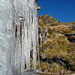 Eis im sonnigen Tessin