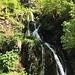 Quellen am Doubs