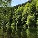 Grüne Märchenlandschaft