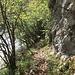 steiniger Pfad am Ufer