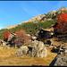 Herbstlicher Empfang in Mazzorino.
