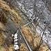 so sah der Steg noch 2011 aus © http://www.alpi-ticinesi.ch/