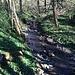 Ein weiterer kleiner Flusslauf an der Grenze