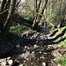 Der kleine Fluss Laveggio wird im Sommer wohl austrocknen