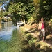 verwunschene Wege am Rhein