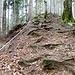 Aufstieg sogar mit Treppenlauf