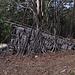 Verfallenes Naturzelt / tenda naturale un pò in rovina
