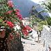 Masca, ein bemerkenswertes Dorf im Teno Gebirge