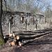 Březina - Bei den Resten des verfallenen Gebäudes handelt es sich vermutlich um das ehemalige Forsthaus.