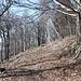 Im Aufstieg zum Pařez - Ein breiter Weg führt quasi um den Hügel herum in Richtung Gipfel.<br />