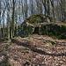 Im Aufstieg zum Kamenný vrch - Während des weglosen Abstechers zu einem weiteren Gipfel passieren wir etliche Felsen.