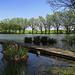 Naturdenkmal Egelsee, monumento naturale
