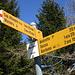 an der Alpe Arami - 1200 hm oberhalb von Gorduno - endet  der Fahrweg<br />eine 2012 gegründete Stiftung hat es sich zum Ziel gesetzt, die Alp nicht weiter verfallen zu lassen, sondern durch geeignete Massnahmen zu revitalisieren