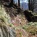 ab Alpe Arami wird der Pfad schmal und streckenweise etwas ausgesetzt
