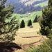 Oberhalb Wiesenberg