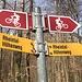 Klar - wir sind auf dem Rheintaler Höhenweg
