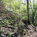 hier ist der Abzweig ins Val Croat. Hinter dem Baum sieht man das Geländer