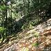 im Aufstieg nach Sur La Roche