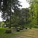Ruine Alt Tierstein