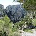 der Aufstieg von der Calanque Oule? war sehr mühsam mit Kletterstellen (I) und es war schon sehr heiss.