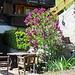auch der Flieder blüht schon - ein idyllischer Sitzplatz