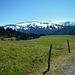 ... hinunter zur Hochegg Alpe.