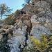 Auf dem Nordgrat des Jochschrofens - steil, teilweise ausgesetzt und nicht immer sind zuverlässige Tritte vorhanden.