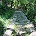 steinig der Aufstiegsweg
