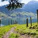 Bei der Alp Schrä. Blick zurück zum See.