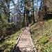 Zwischen Schrä und Bärlaui ist der Weg mit einigen Stegen versehen